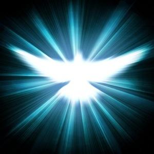 light-bird